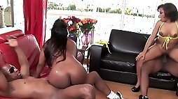 Two curvy ebony babes enjoy themselves in hot foursome