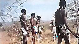 Real African safari