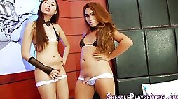 Transsexual oriental spunks